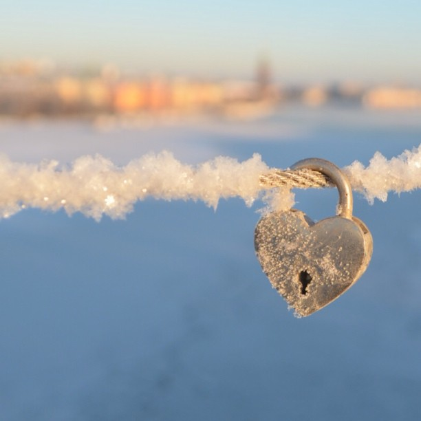 I love Stockholm #stockholm #love #winter #lovelocks #lovelock #padlock #view #instaaddict #instagramers #igers #ig_sweden #ig_bestever #ig_captures #ig_snapshots #igersoftheday #ig_sweden_winter #heart #bestshots #bestsnaps #nikon #nikonphotographers