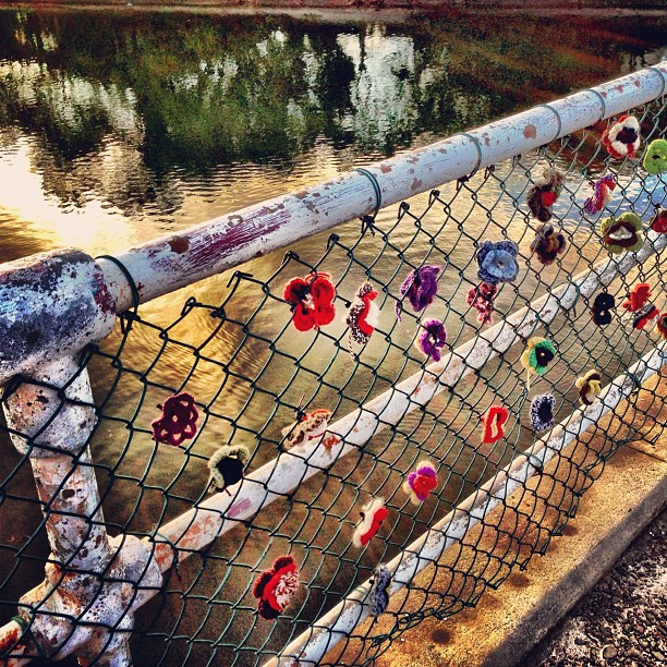 Not quite the #lovelocks of Paris. Lovehairbands of Islington? #newcastle #Australia