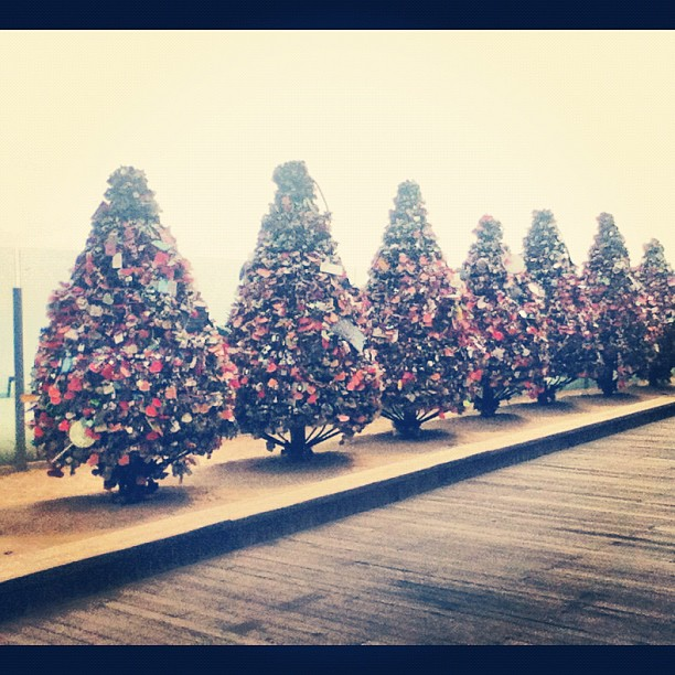 #NamsanTower Love Lock Trees!
