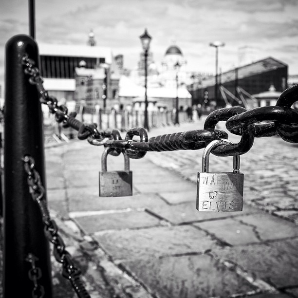 Elvis is in the area ! #lovelocks #liverpool #albertdock #blackandwhitephotography#blackandwhiteyear #blackandwhiteonly #blackandwhite #fence #ig #igrs #igers #photooftheday #picoftheday