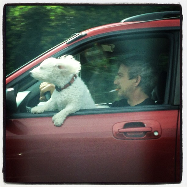 Make Speed #MakeLoveLocks #SnoopyLovesRoadTrips #SmokingaCigWhileMyDogIsOutTheWindow #TheLadiesLoveIt