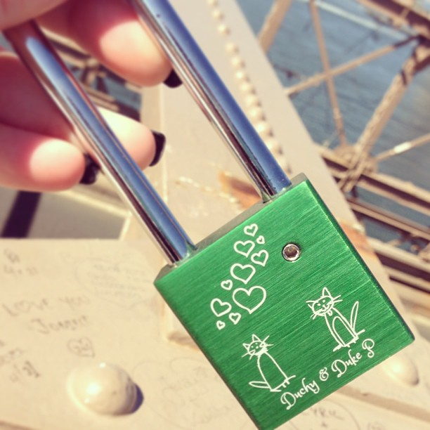 the otherside to our love lock - our babies needed a mention too #makelovelocks #bsh #britishbluecat #brooklynbridge @bennyp013
