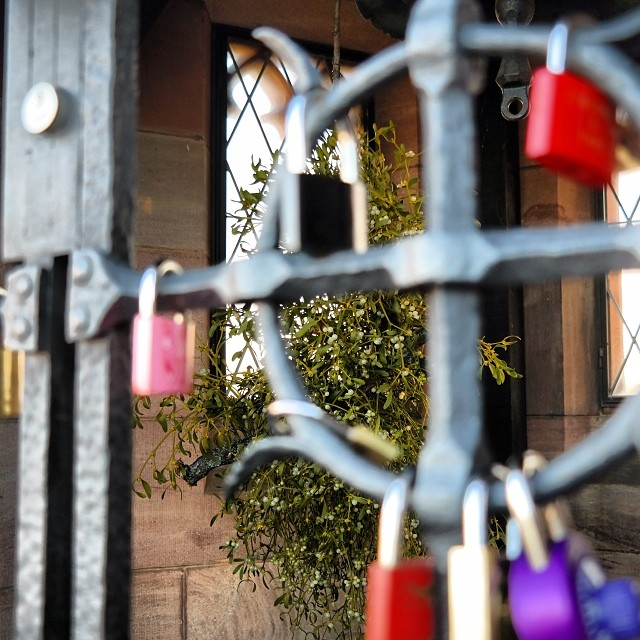 #lovelocks #mistletoe